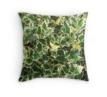 Variegated English Holly Throw Pillow