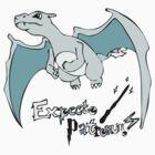 Charizard - Expecto Patronum ! v1 by Fawkes