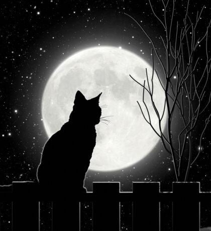 Moon Bath II, cat full moon winter night Sticker