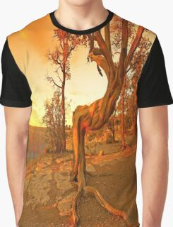 Grand Canyon Sunny Graphic T-Shirt