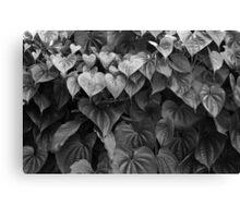 Monochrome Leafiness Canvas Print
