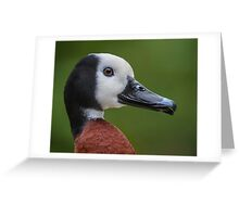 Portrait of a duck Greeting Card