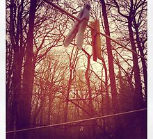 Trees and Clothespins by sheleen