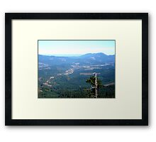 Snag With a View Framed Print