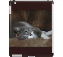 Furry Cat © Vicki Ferrari iPad Case/Skin