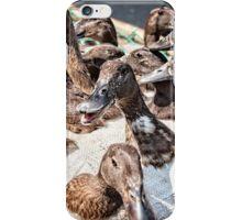 Ducks in a basket iPhone Case/Skin