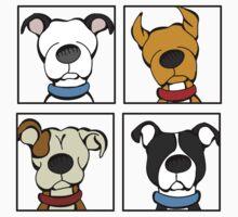 Pitbull 4 Square Kids Clothes
