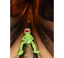 Frog Kermit Slip Mine Salt Mine Photographic Print