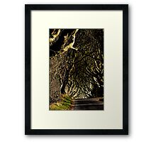 Game of Thrones location  Framed Print