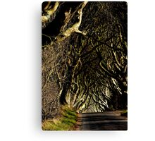 Game of Thrones location  Canvas Print