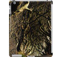 Game of Thrones location  iPad Case/Skin