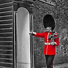 Clarence House Guard by John Dickson