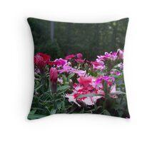 Beautiful Dianthus Throw Pillow