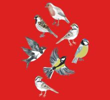 Illustrated Birds Kids Clothes