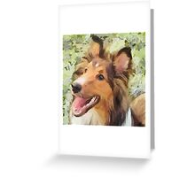 Sheltie - May Greeting Card