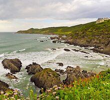 Coastal view by JEZ22