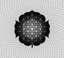 """""""Space Lotus"""" by Dylan Bloomfield"""