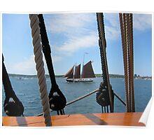 Tall Ship Roseway Poster