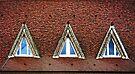 Three Windows  by Lucinda Walter