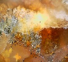 Rumble Fire (Plume Agate) by Stephanie Bateman-Graham