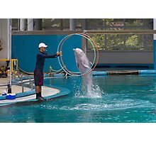 Dolphin going through a hoop at the Underwater World in Sentosa in Singapore Photographic Print