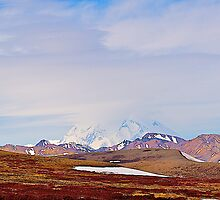 Misty Mt McKinley, Denali National Park,  Alaska. 2012. by johnrf
