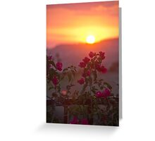 Sunset & Vine  II Greeting Card