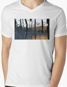 Autumnal Marsh Mens V-Neck T-Shirt