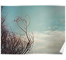 Love in the Sky.... Poster
