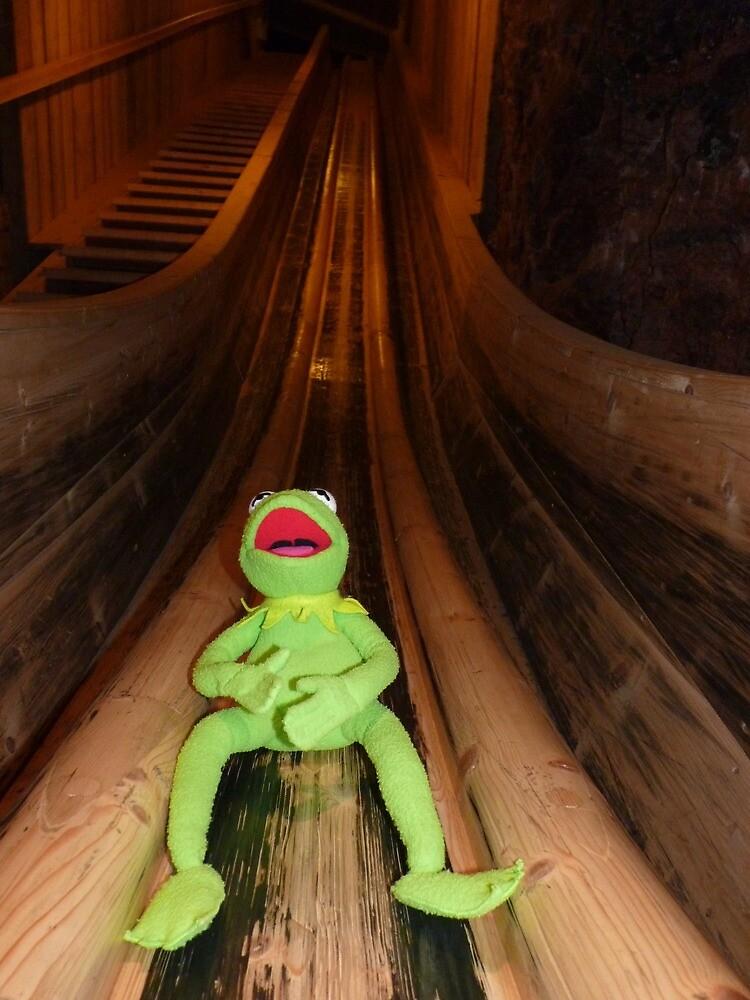 Frog Kermit Slip Mine Salt Mine by HQPhotos