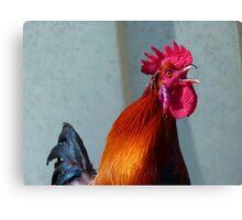 Hahn Gockel Poultry Crow Colorful Farm Canvas Print