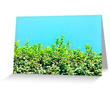 Bright Summer Sky Greeting Card