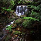 Leura Weeping Rock by Peter Hill