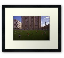 football stadium at Carrer de les Camèlies, Barcelona 2010 Framed Print