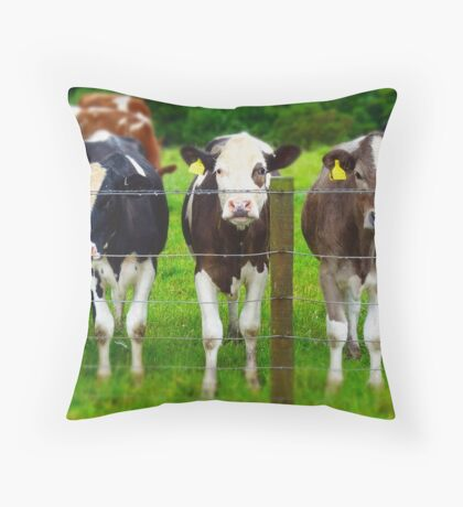 The three degrees... ( in bovine form ) Throw Pillow