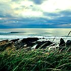 Surfers at Bude, North Cornwall by Wonkstar