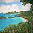Trunk Bay, Caribbean by Teresa Dominici