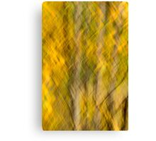 Mystical Autumn trees Canvas Print