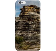 Pergoda panorama iPhone Case/Skin