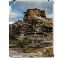 Pergoda panorama iPad Case/Skin