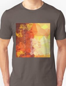 Deep Saffron Orange Abstract Low Polygon Background T-Shirt