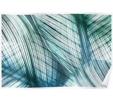 Nature Leaves Abstract in Turquoise and Jade Poster
