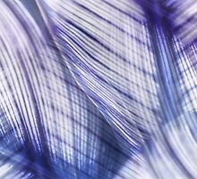 Nature Leaves Abstract in Blue and Purple by Natalie Kinnear