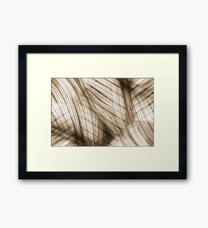 Nature Leaves Abstract in Sepia Framed Print