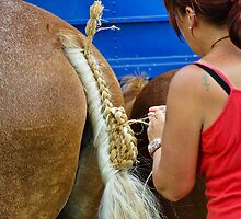 The Art Of Plaiting ~ Buckham Fair by Susie Peek