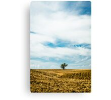 A Sky Full of Clouds Canvas Print