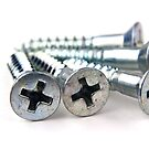 Silver Screws by BlinkImages