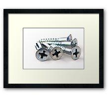 Silver Screws Framed Print