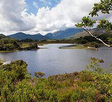 Lake view by Béla Török
