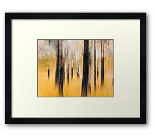 Smoky Woodland Framed Print